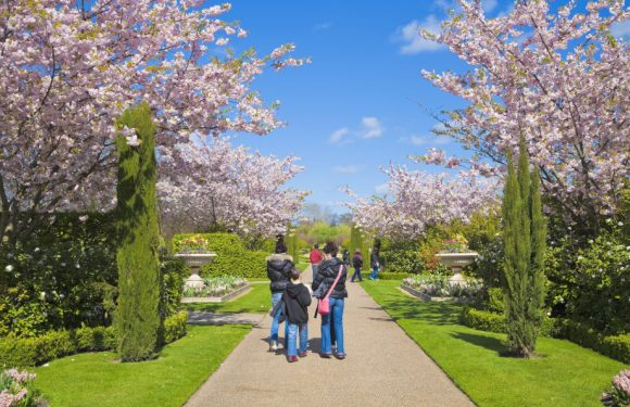 6 Parks that You Cannot Miss to See in London